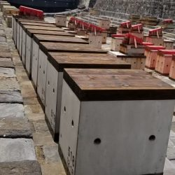2019 Dry Dock_190716_0006