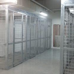 Yokota 4300 cages_190528_0052