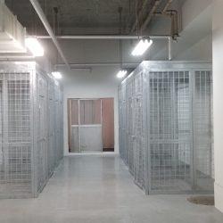 Yokota 4300 cages_190528_0054